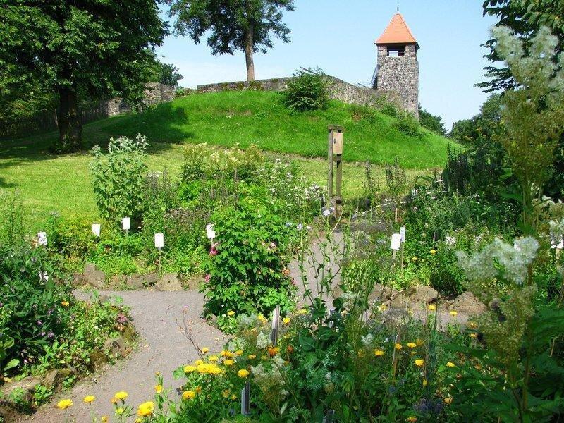 Vogelsberggarten