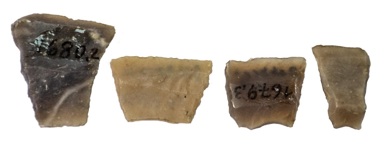 Feuersteinpfeilspitzen aus dem Museum Angermünde
