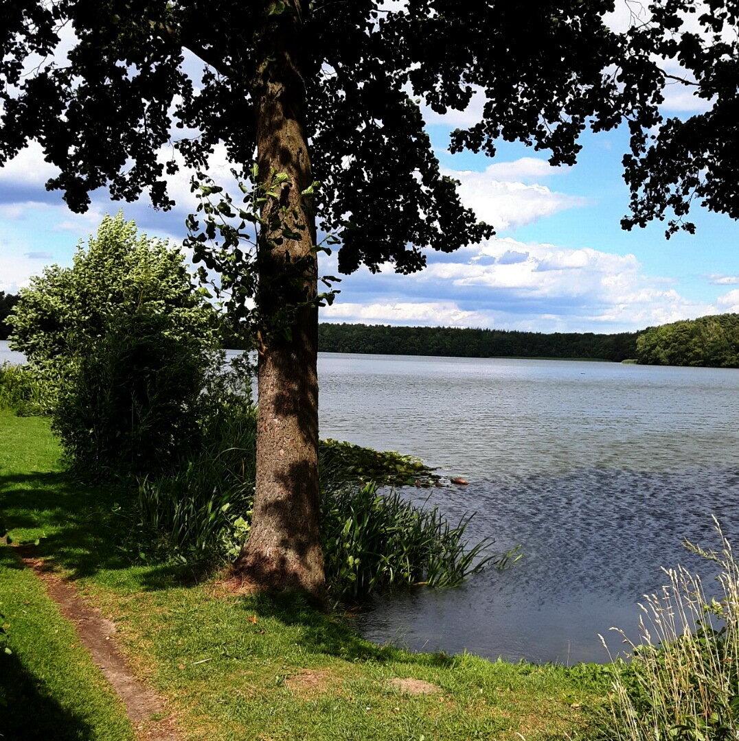 Rundwanderweg mit Uferblick