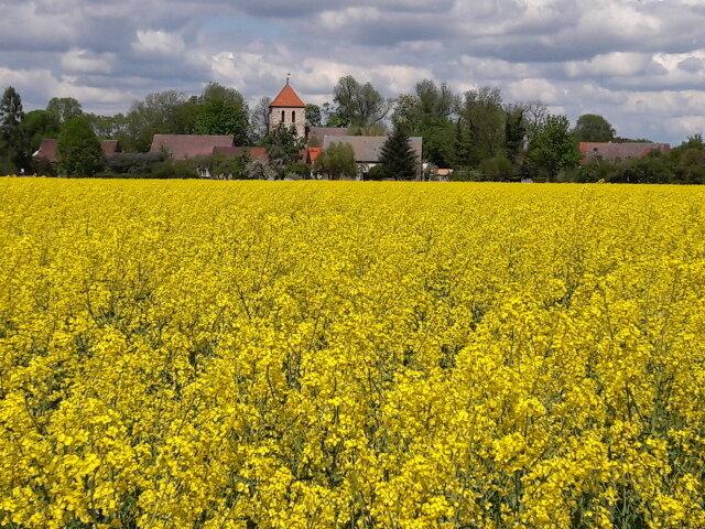 Kirche Werder im Mai