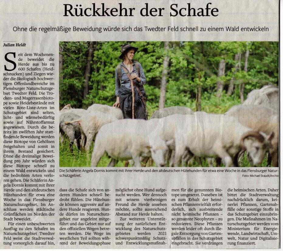 Flensburger Tageblatt 11.05.2021