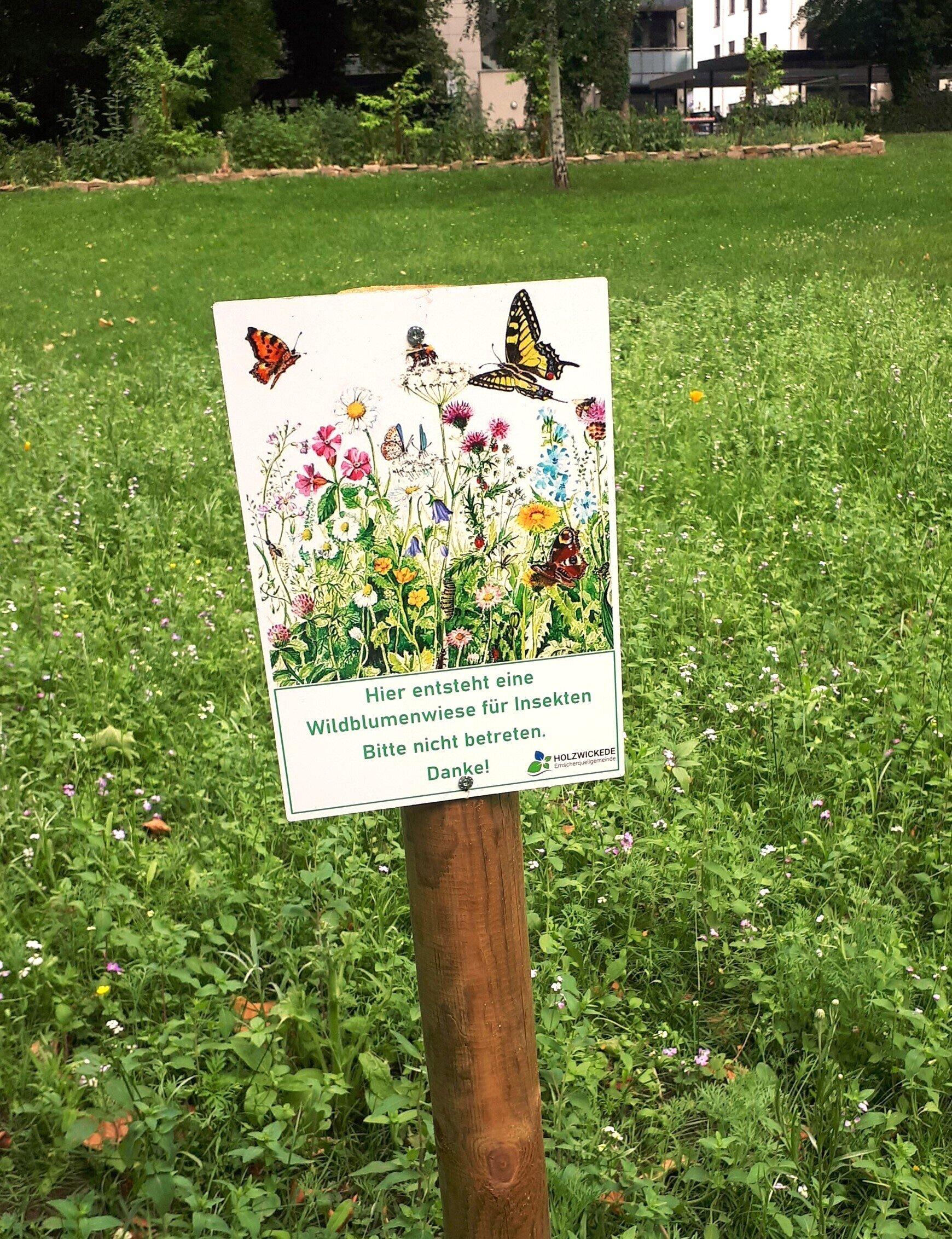 Schild Wildblumen Emscherpark