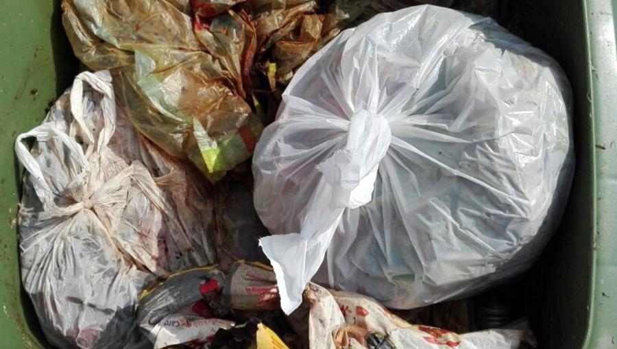 Leider immer häufiger zu sehen: Plastiktüten und Restmüll in der Biotonne
