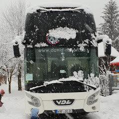 Bus_d