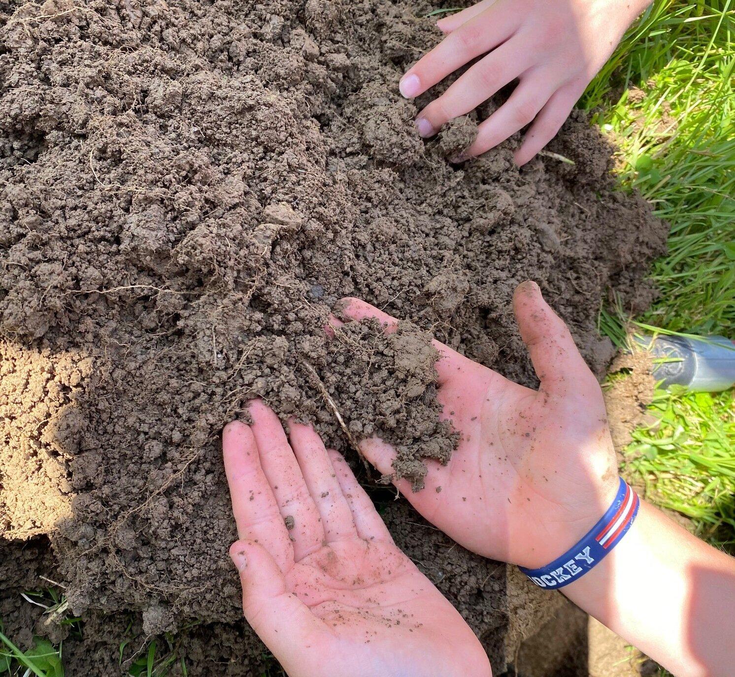 krümeliger gesunder Boden