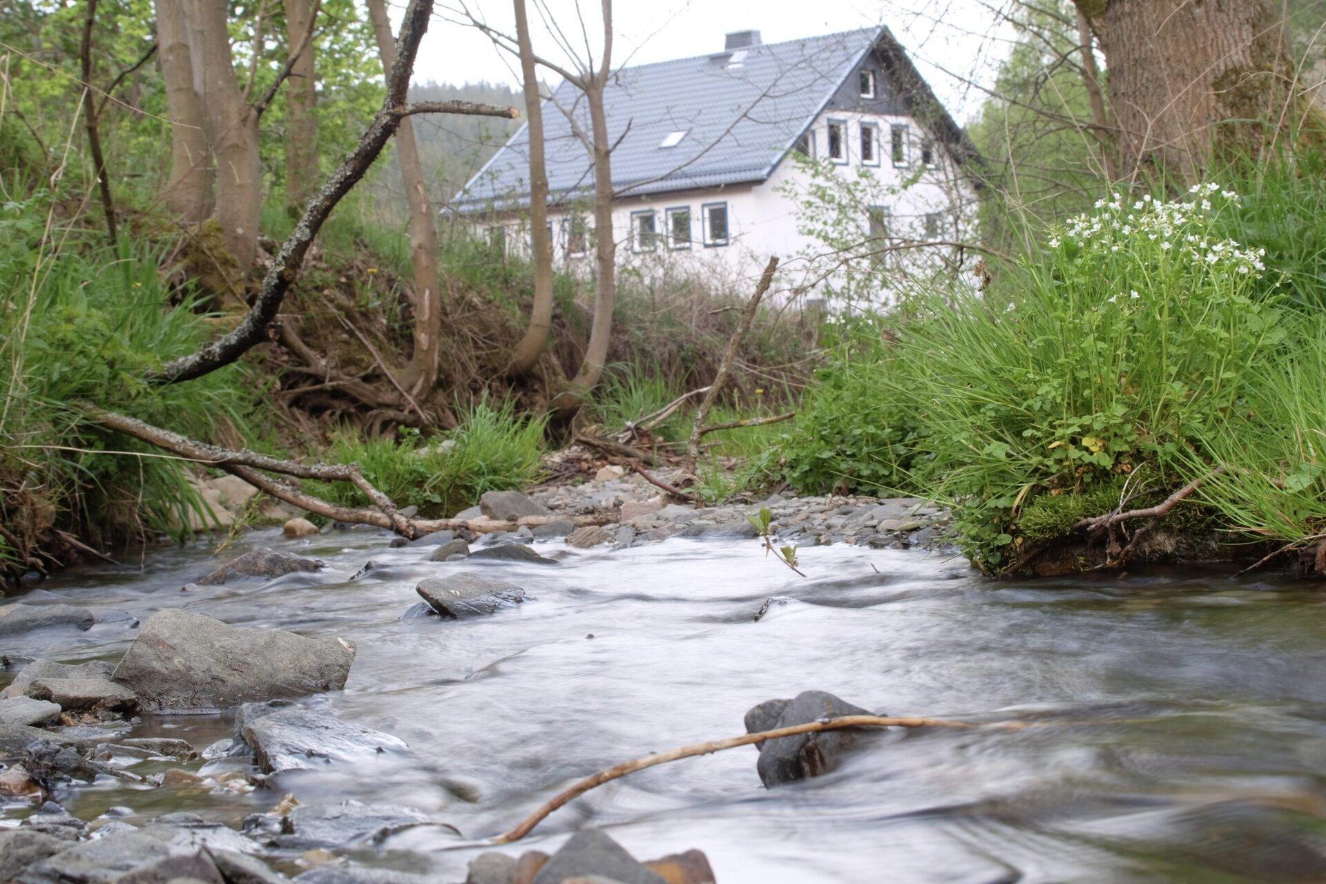 Ölschröte am ehemaligen Mühlenbach