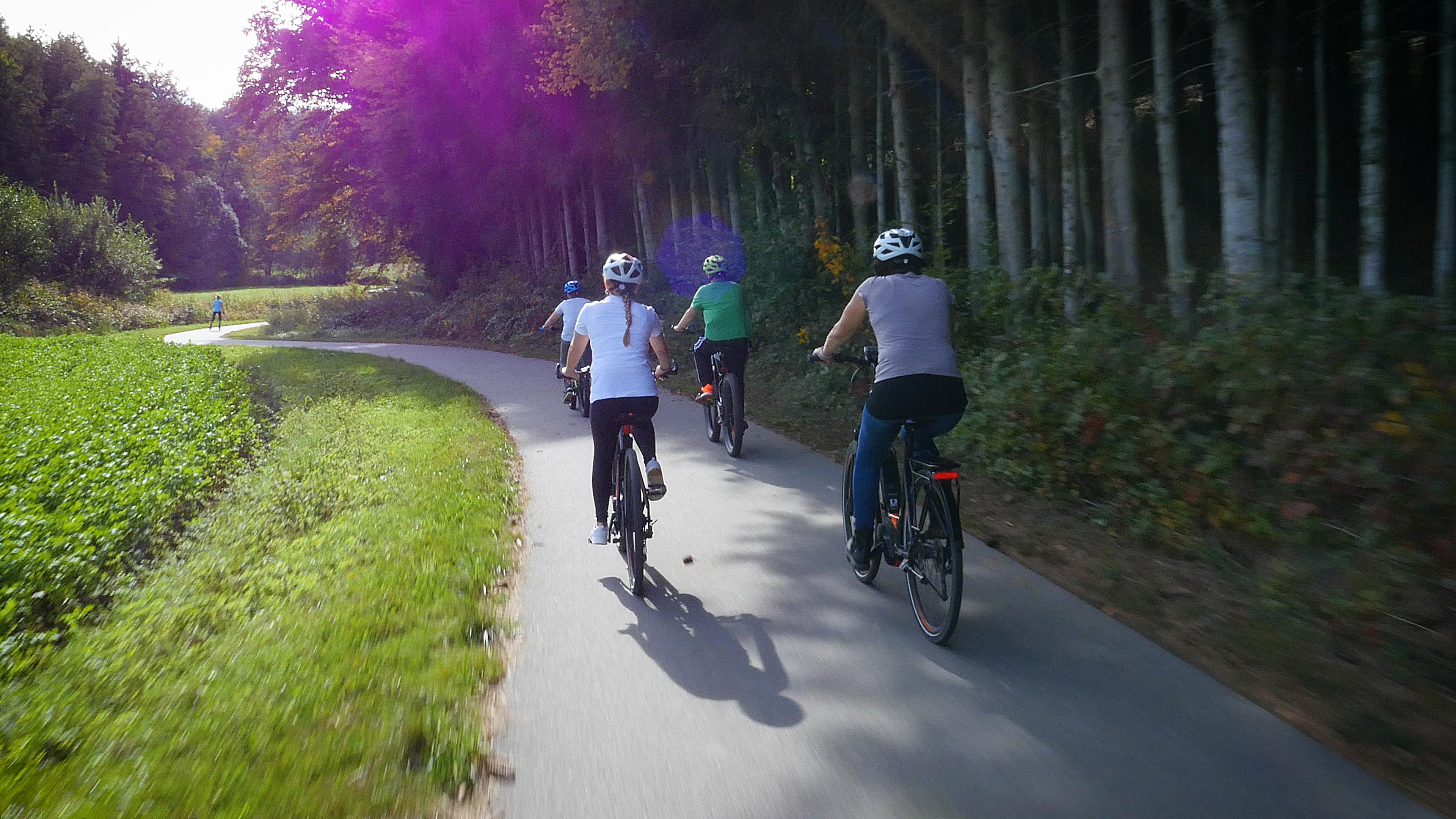 Wolfachradweg