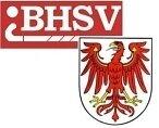 Logo BHSV