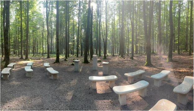Andachtsplatz Bestattungswald Foto Anna Grimm