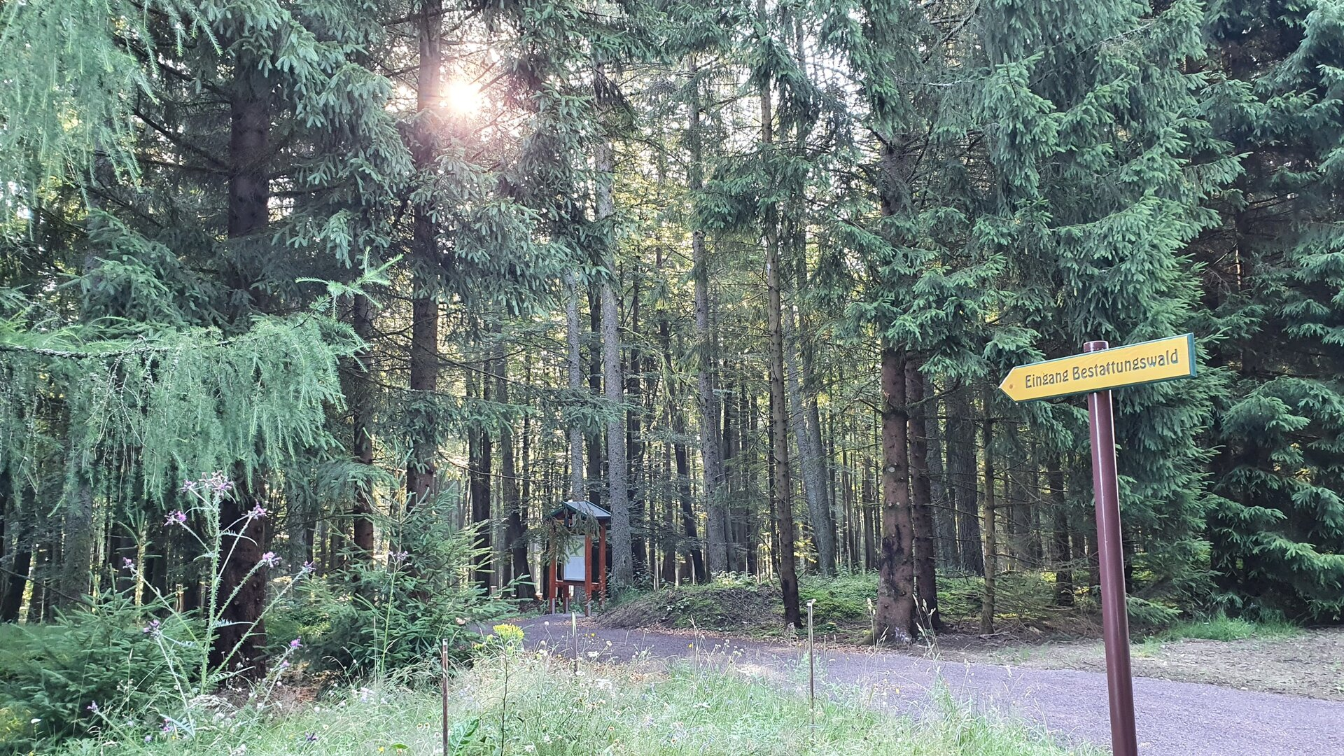 Hinweis am Eingang zum Bestattungswald