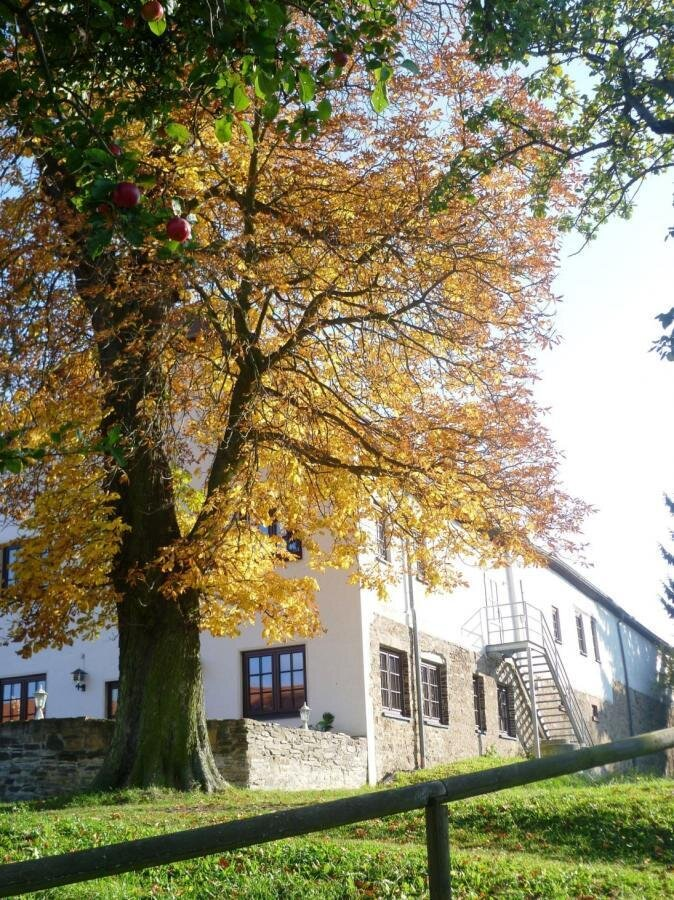 BG Leubsdorf