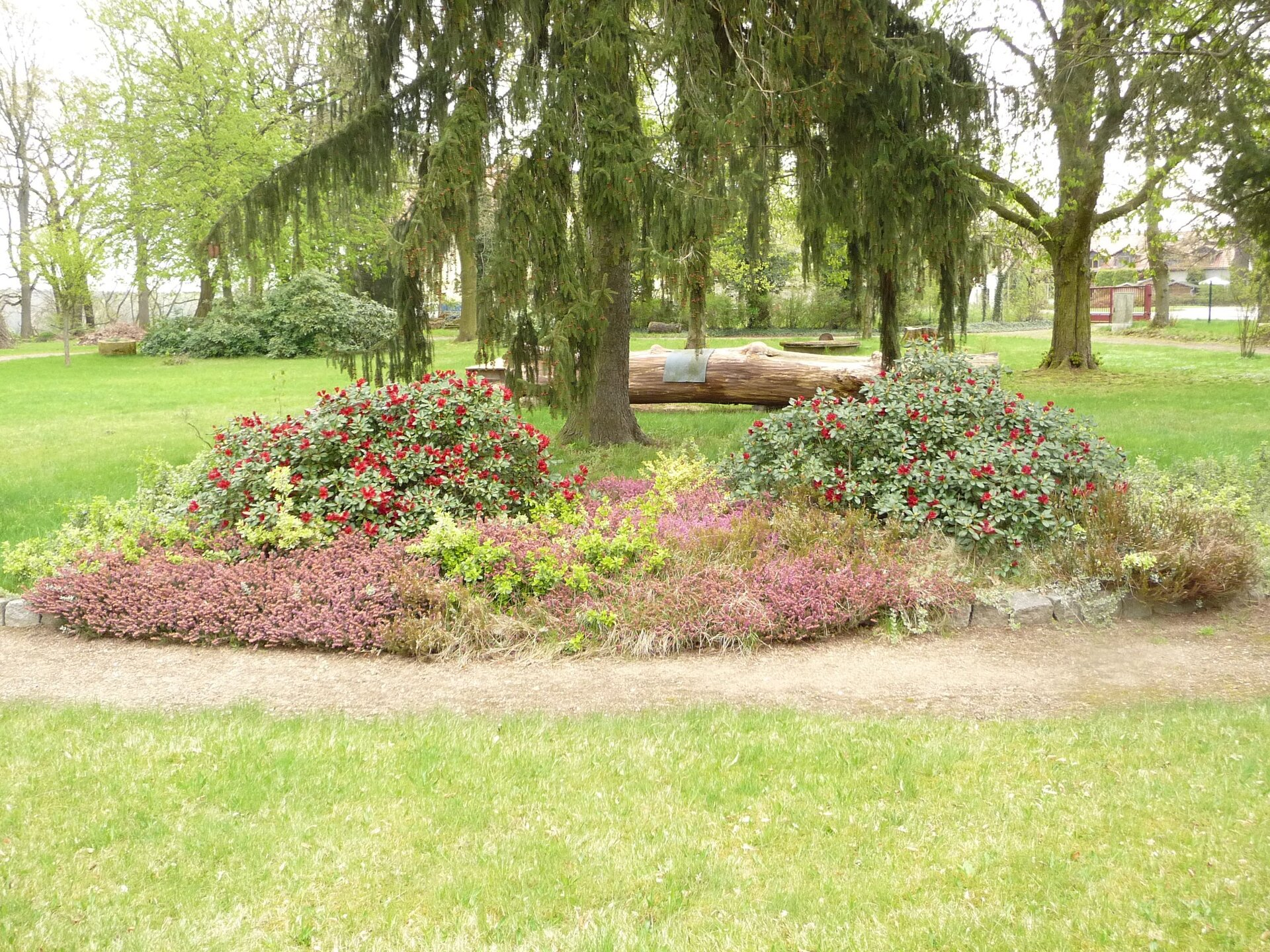 Pflanzgruppe im Park