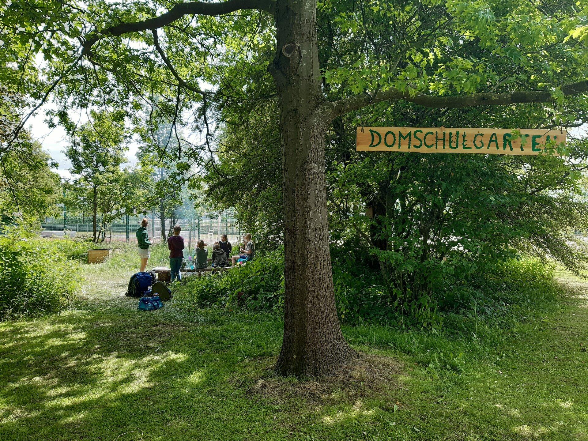 Domschulgarten