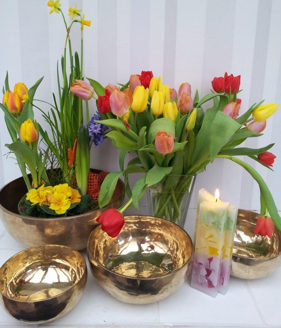 Blumen und Schalen