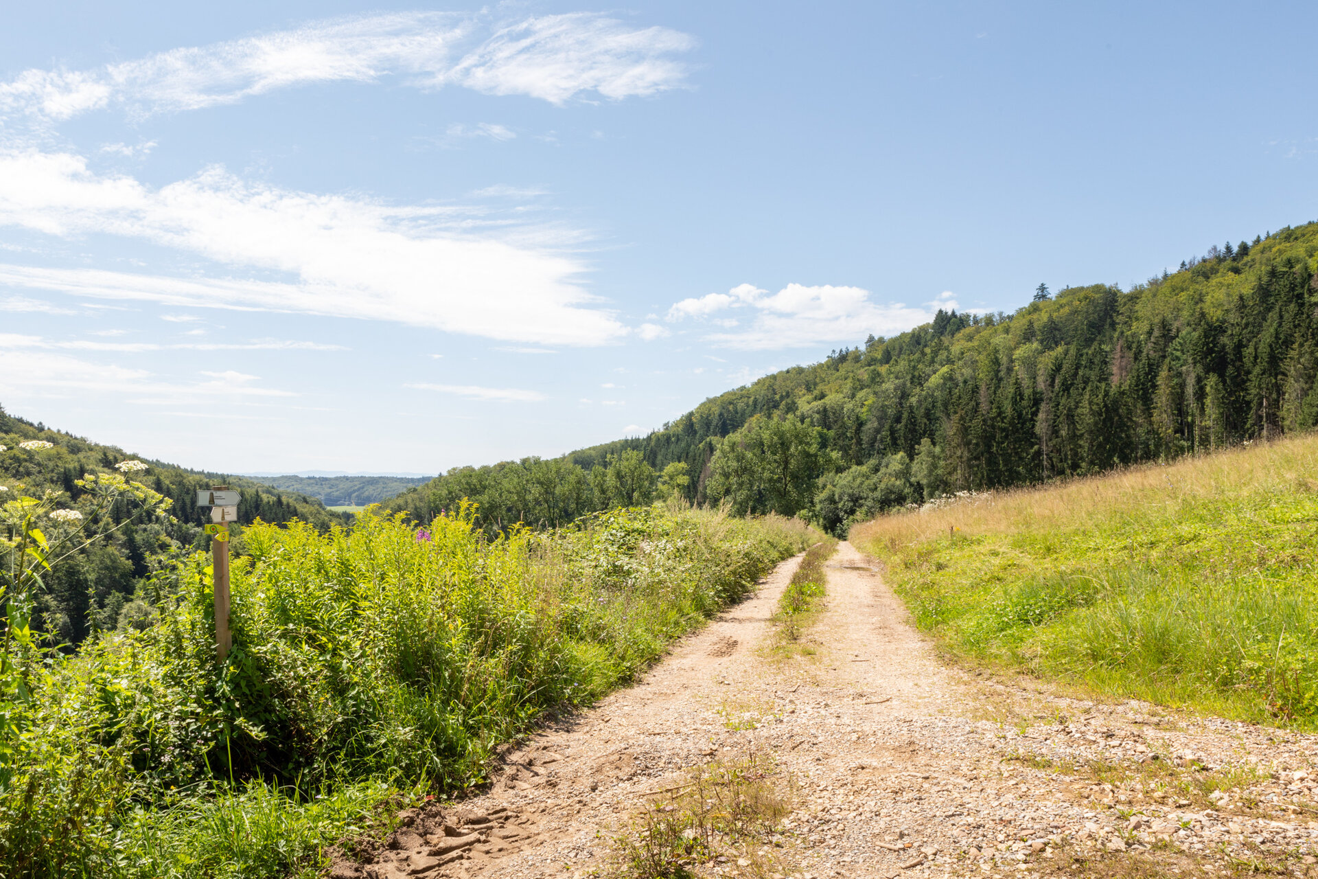 Blick ins Wollbachtal