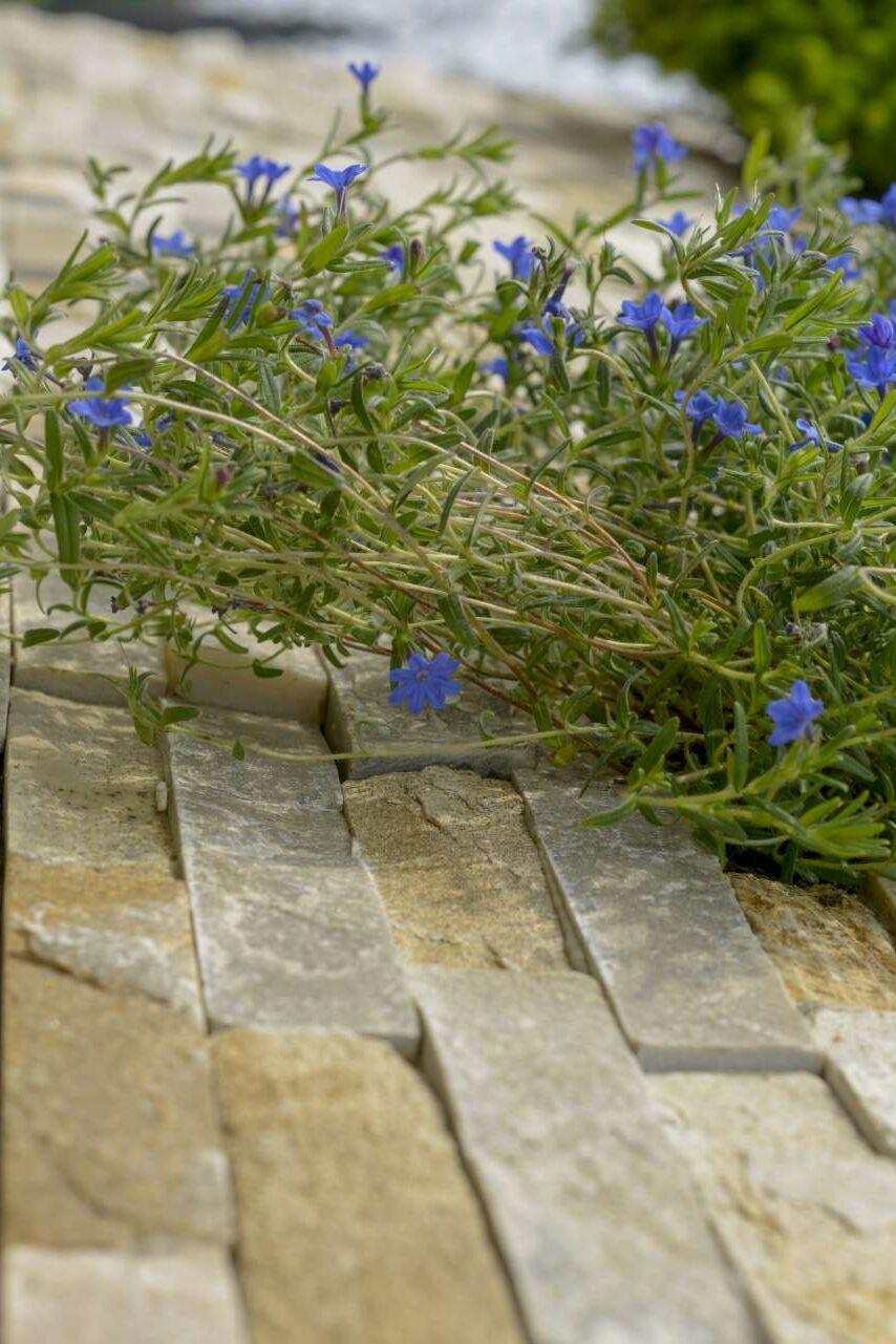Naturstein und Pflanzenverwendung
