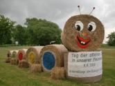 Radeweger Raupe
