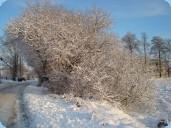 © Foto Karin Schulze – Ladestraße im Winter