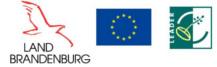 EU-Flagge_ELER