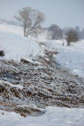 Winter 2013 4