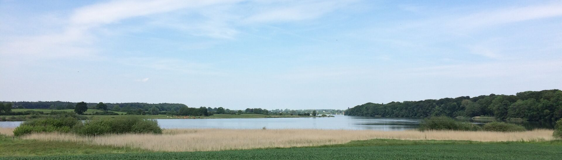 Blick von Bissee aus über den See Richtung Kirchbarkau