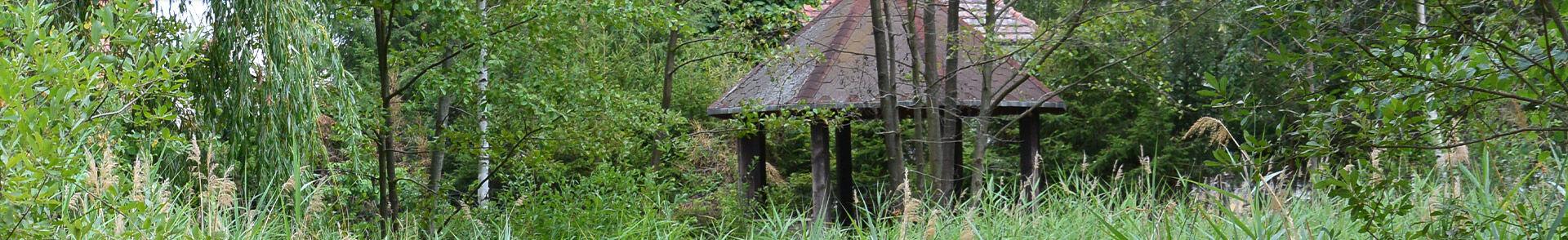 Biotop am Forsthaus Mühlrose