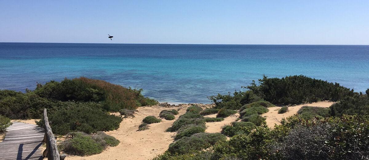 Kilometerlanger Sandstrand mit herrlichen Buchten am Ionischen Meer