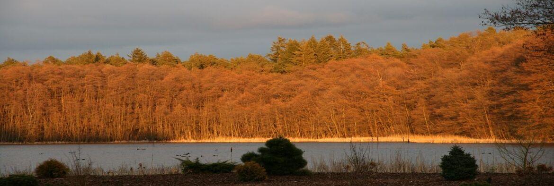 Sonnenuntergang am Kattenstiegsee