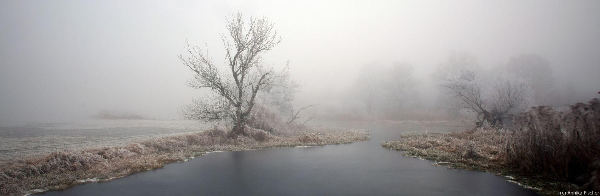 Havellandschaft im Winter (c) Annika Fischer
