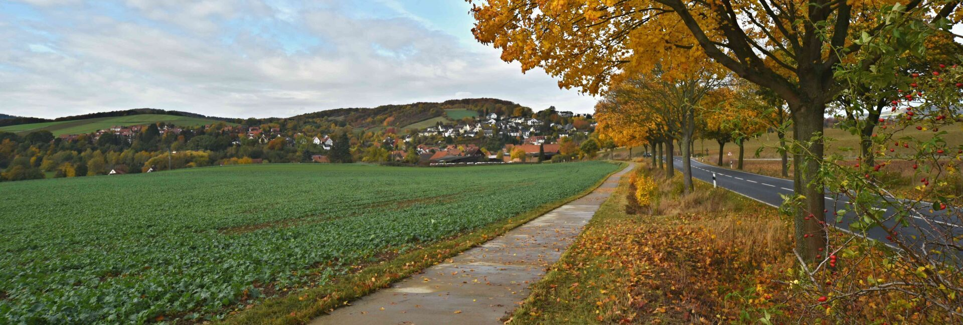 Herbstansicht aus Richtung Bünte