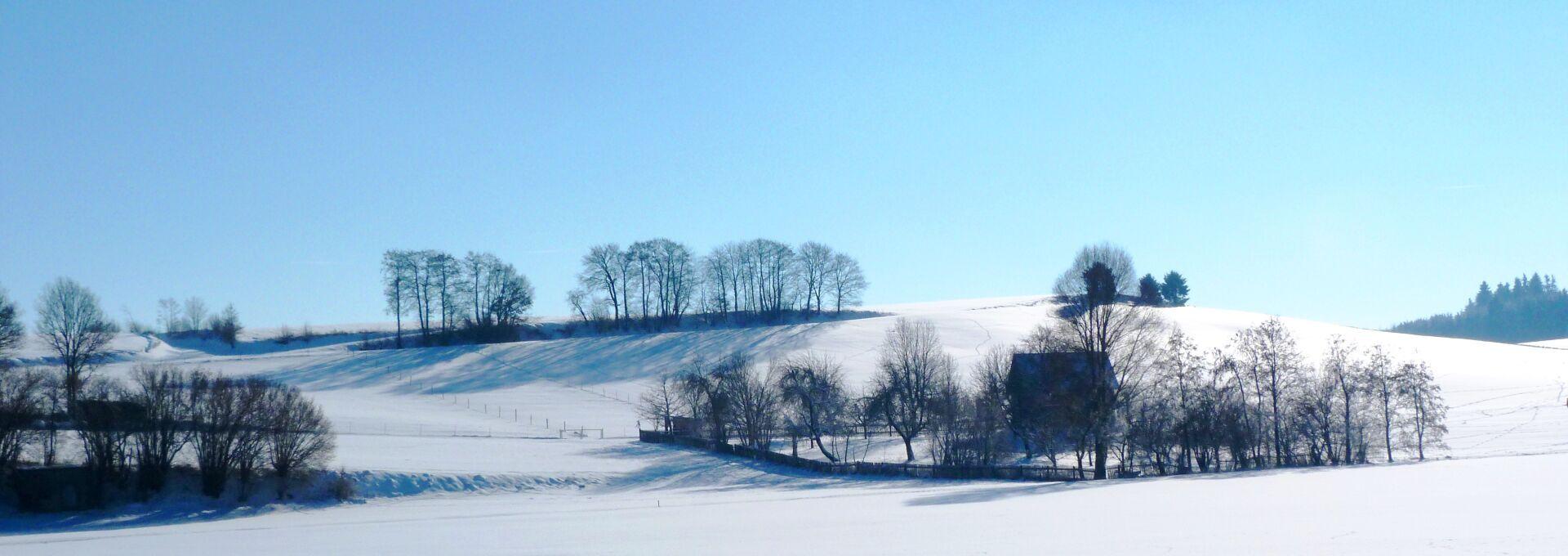 Am Ortsrand von Vallried (Fotograf Max Trometer)