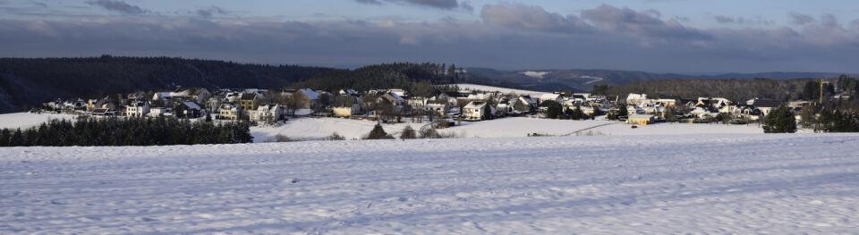 Blick vom Kugelbaum im Januar 2021