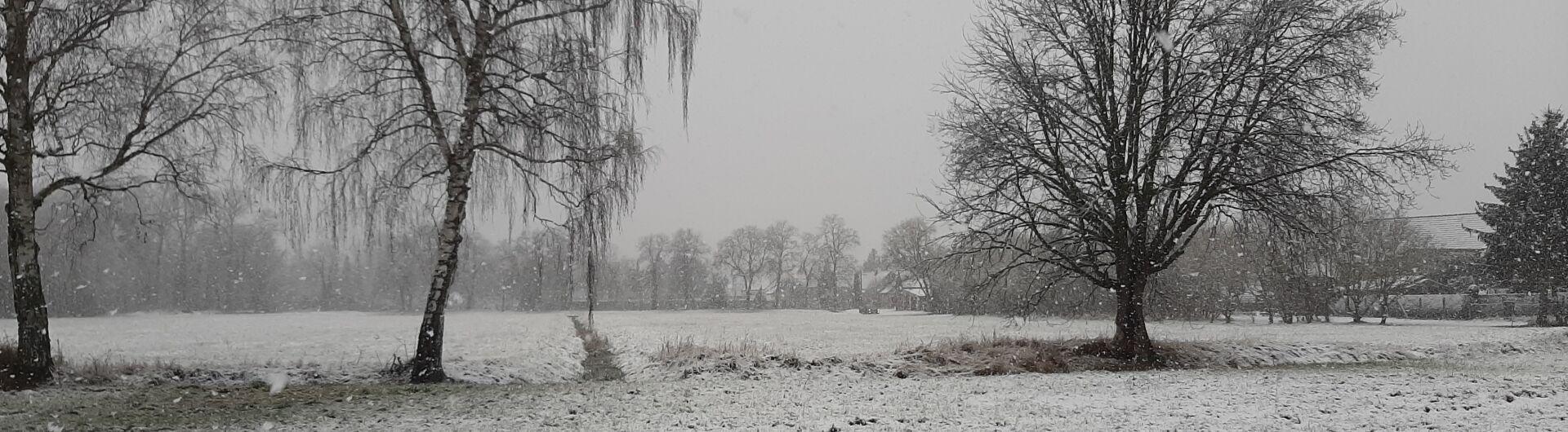 über die Wiesen, 23.01.2021, Fotorechte: U.Schöne