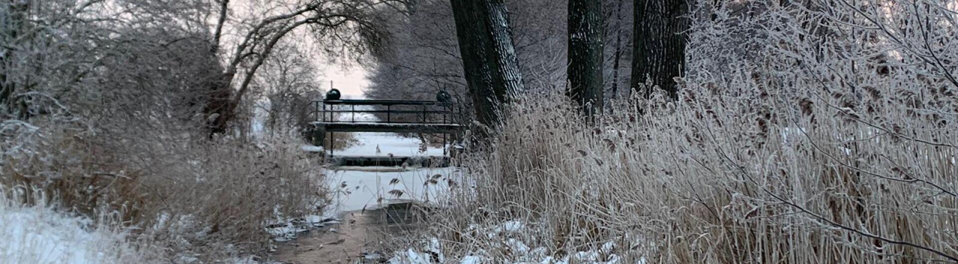 Staudamm Schönewalde am 09.02.2021, Bildrechte A. Wille