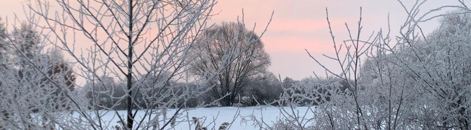 Winter 09.02.2021, Fotorechte: A. Wille