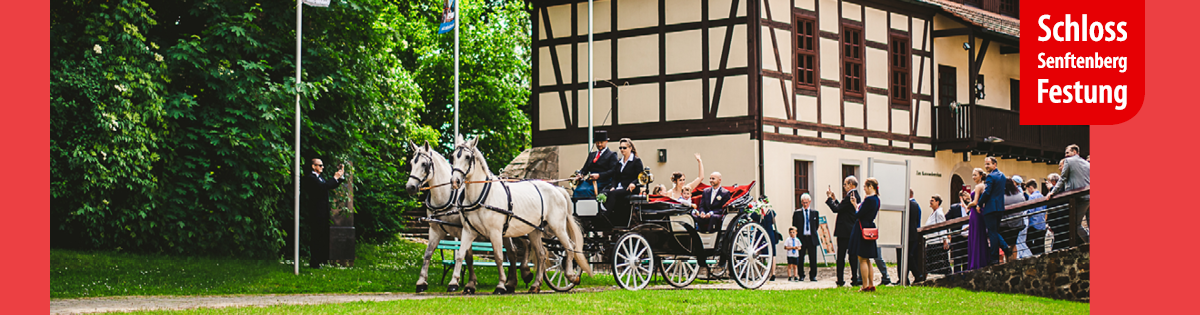 Banner_Hochzeit Schloss und Festung Senftenberg Foto- Ron Marzok