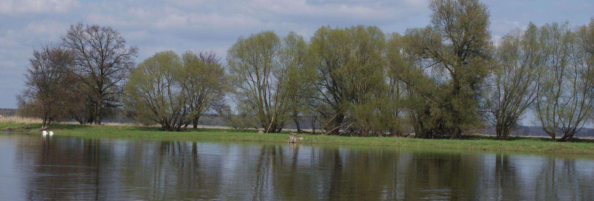 Blick aufs Odervorland