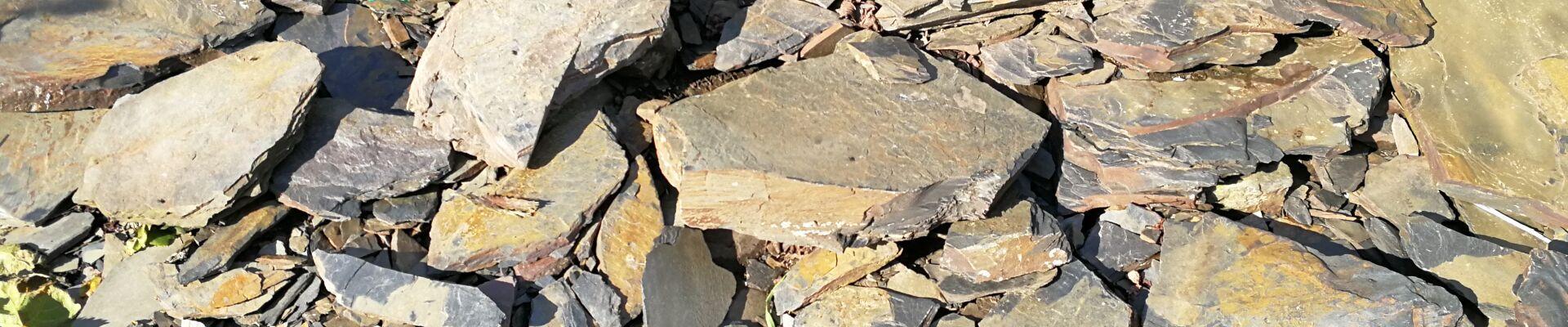 Schiefer - das ist der Boden in dem Reben für Wein aus dem WeinGut Benedict Loosen Erben stehen