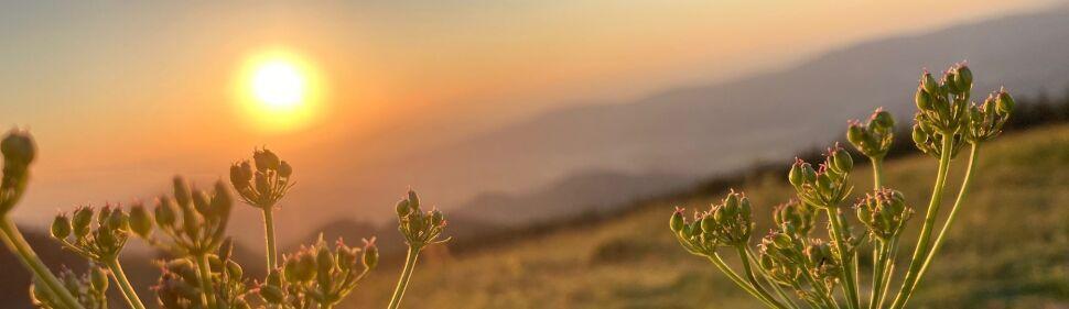 Sonnenuntergang am Hinterwaldkopf