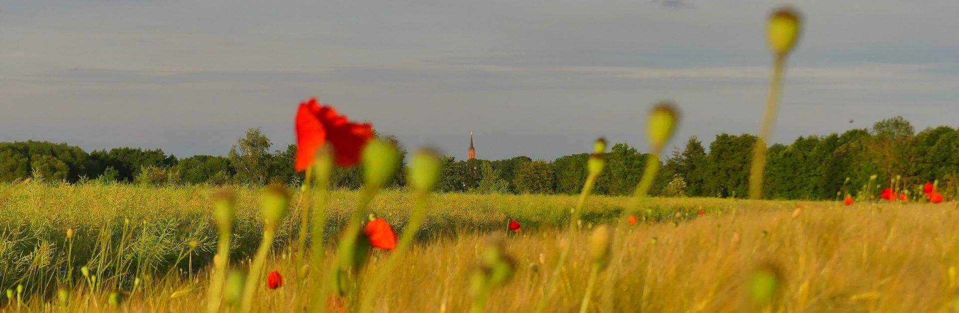 Feldblick nach Rathenow