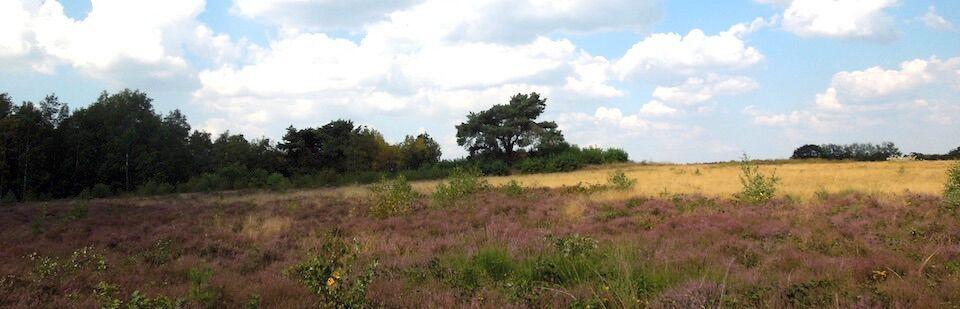 Langeln Hügelgrab