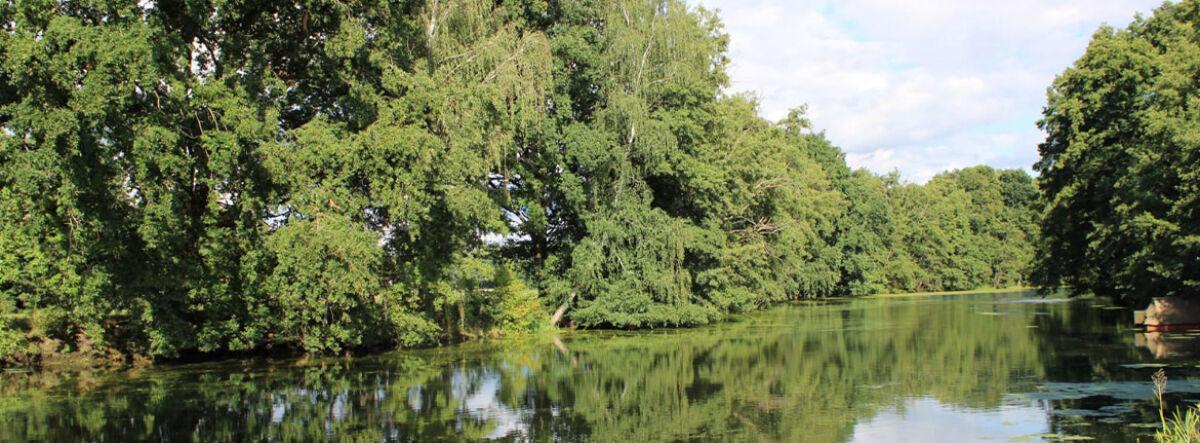 Spree bei Drahendorf